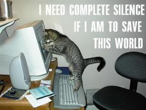 cat saving the world